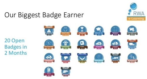 Micro Credentialling Badges